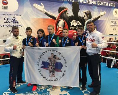Сборная области завоевала медали первенства России по тайскому боксу