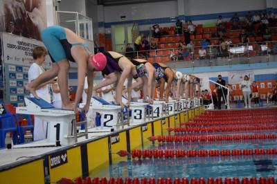 Калининградские пловцы завоевали 12 медалей первенства СЗФО