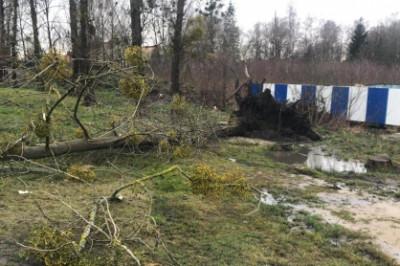 Следователи СКР выясняют обстоятельства гибели школьницы в Гурьевске