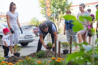 В Гурьевске единороссы реализуют акцию «Живая изгородь»