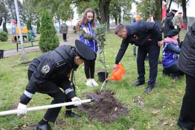 Единороссы Гусева приняли участие в акции «Сад памяти»