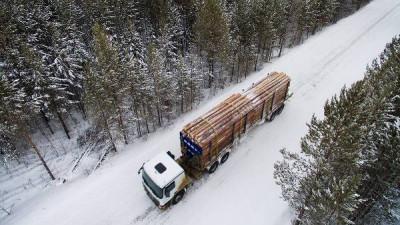 """""""Единая Россия"""" предложила поправки в Лесной кодекс"""